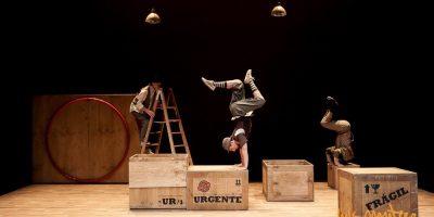 circada festival de circo