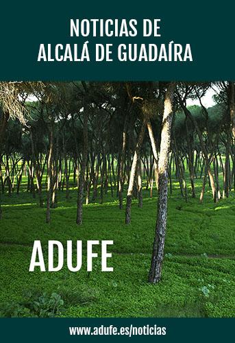 Noticias de Alcalá de Guadaíra